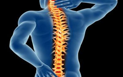 Exploring the Comprehensive Spine Center (CSC)